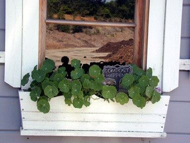 Composting Window and Plant