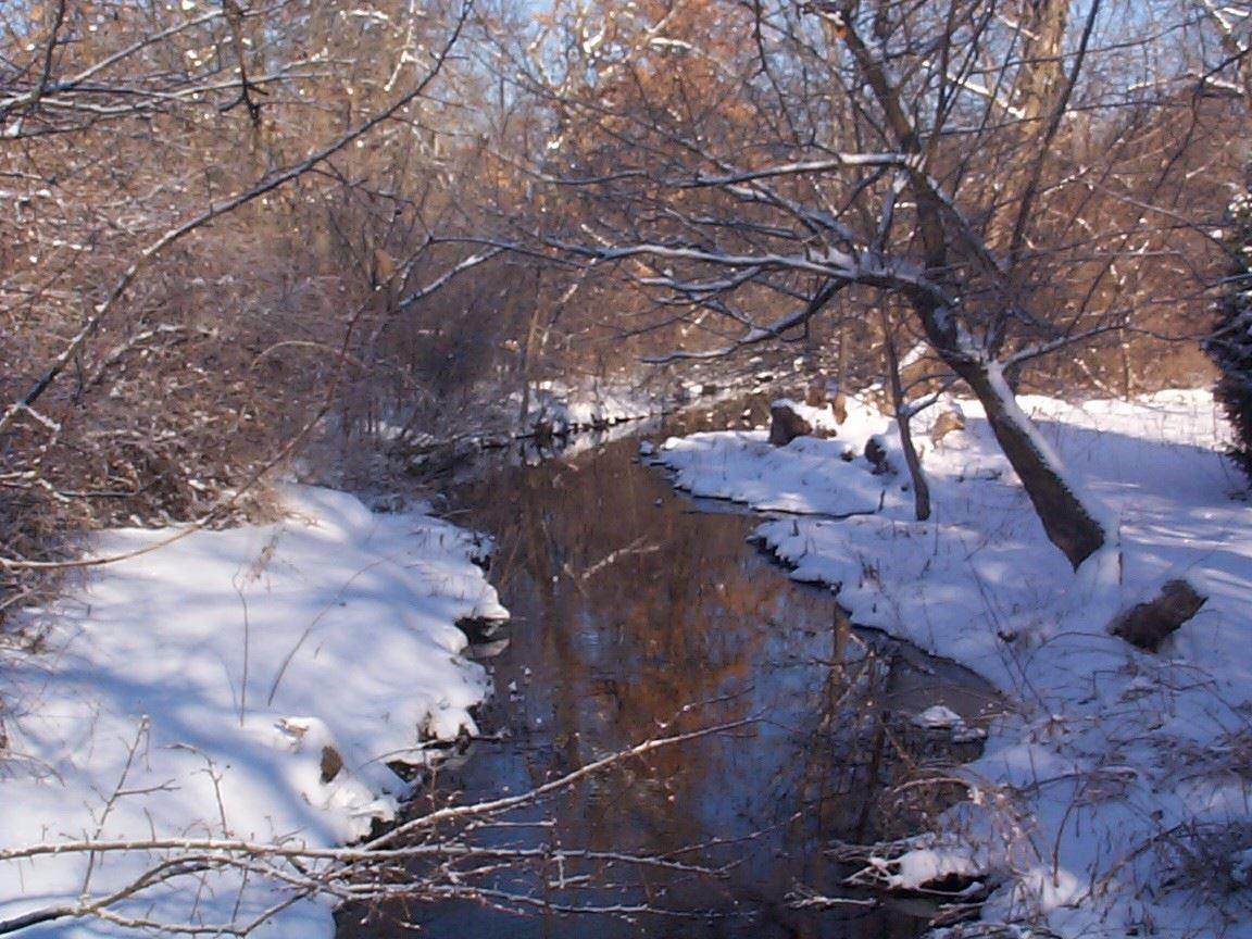 Small brook surrounded by snow