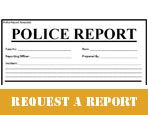 REQUEST A REPORT ICON LINK copy
