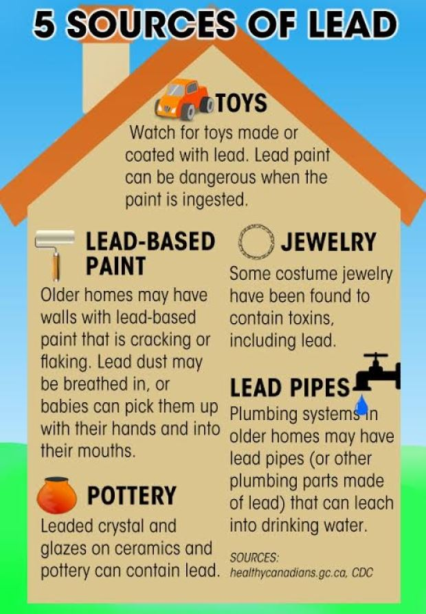 5 lead-source-infographic